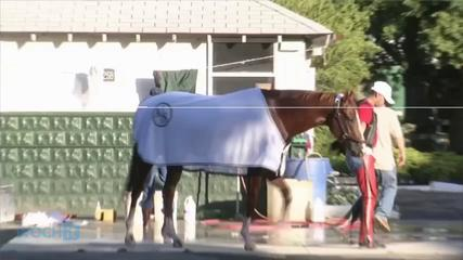 News video: Hard And Fast Lessons From California Chrome